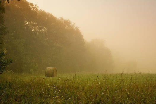 Foggy Morning by Victoria Winningham