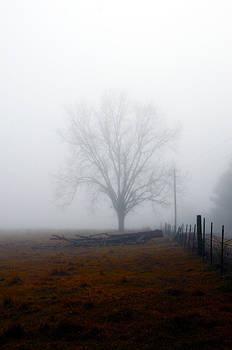 Foggy Sunday by Leon Hollins III