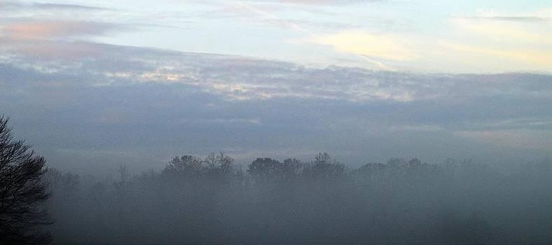 Foggy Sunrise by Christine Bradley