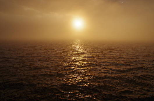 Marilyn Wilson - Foggy Sunrise