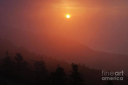 Jonathan Welch - Foggy Sunset