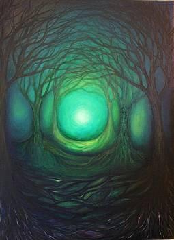 Follow the Light by Alina Skye