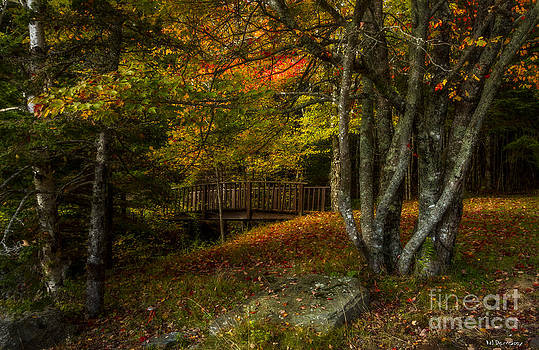 Follow the Path by Nancy Dempsey
