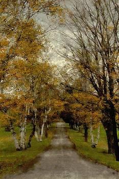 Follow the road by John Stuart Webbstock