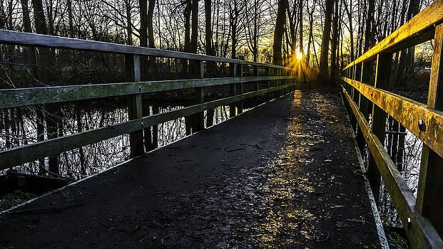 Footbridge In The Park At Sunset by Libor Bednarik