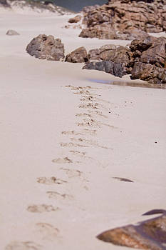 Michelle Wrighton - Footprints in the Sand