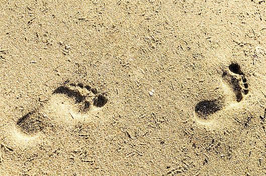Footprints. by Slavica Koceva