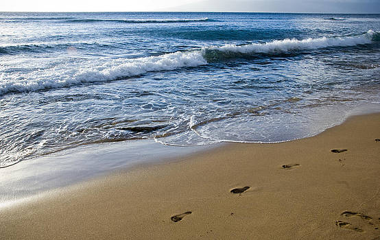 Footsteps in the Sand by Chris Ann Wiggins