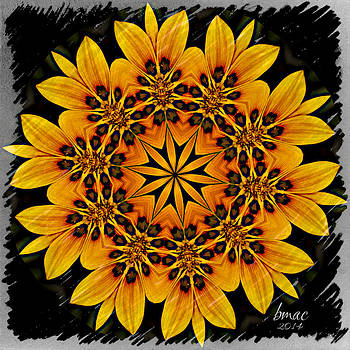 For the Love of Sunflowers by Barbara R MacPhail