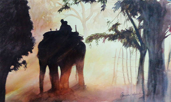 Forest India by Gourav Sheode