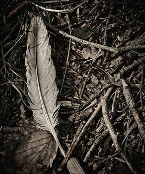 Forest Still Life by Odd Jeppesen