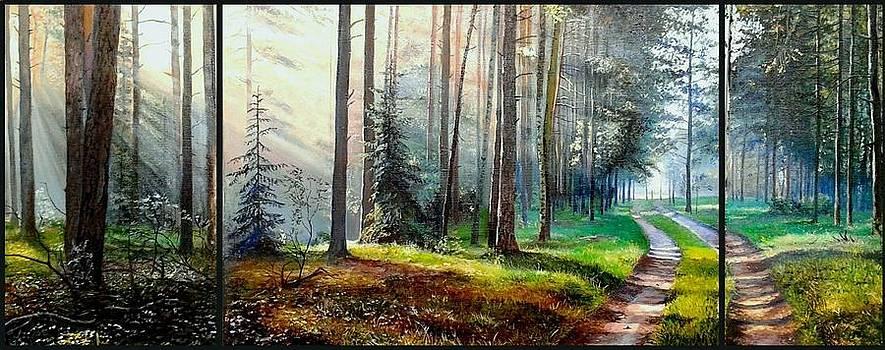 Forest Walk by Sergey Lutsenko