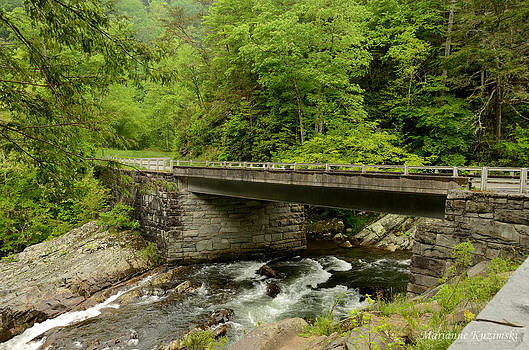 Marianne Kuzimski - Forested Bridge