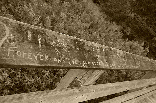 Marilyn Wilson - Forever and Ever - sepia