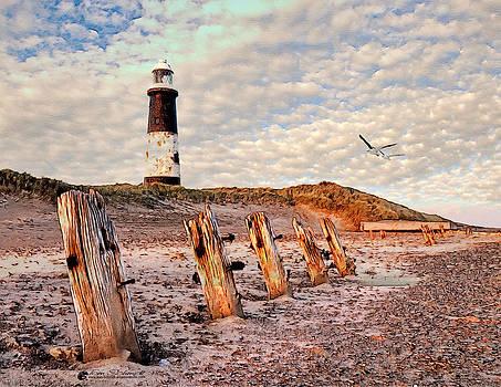 Forgotten Beach by Tom Schmidt