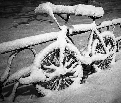 Arkady Kunysz - Forgotten bicycle