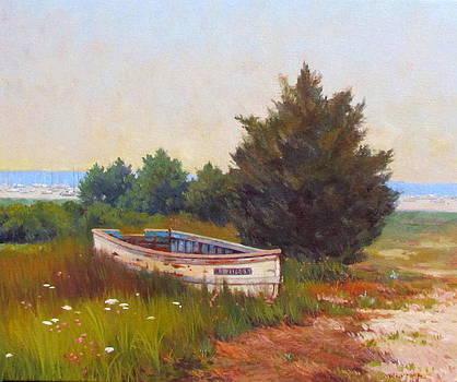 Forgotten Dory by Dianne Panarelli Miller