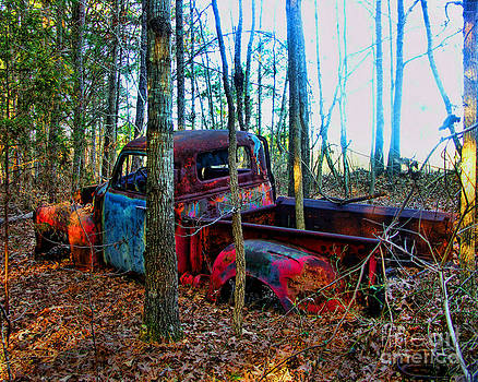 Forgotten Pick up by Julia Dressler