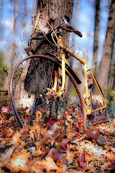 Dan Carmichael - Forgotten Treasure - Blue Ridge Parkway