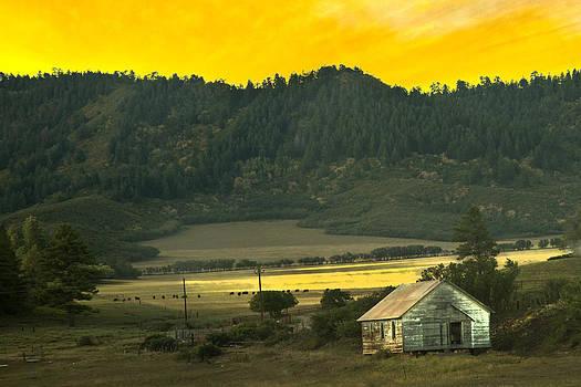 Randall Branham - Forgotten Valley Farm