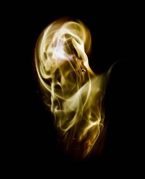 Steven Poulton - Apparition