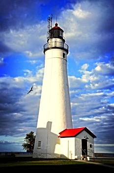 Fort Gratiot Light House and Gull by Cheryl Cencich