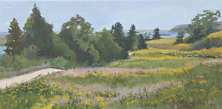 Fort Hill by Karen Lipeika