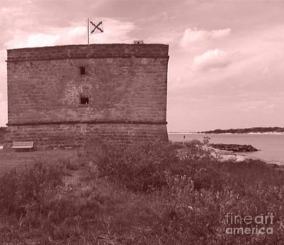 Fort Matanzas by Sarah Card
