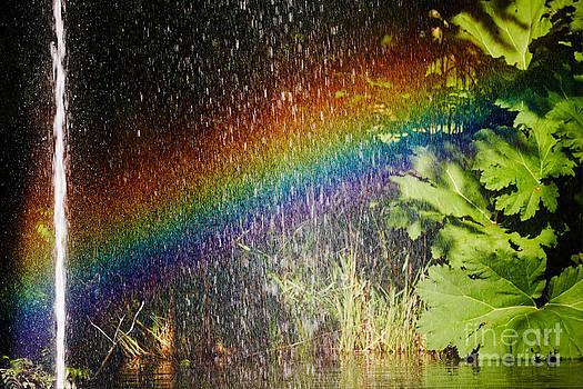 Nick  Biemans - Fountain and rainbow