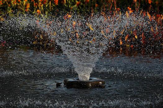 Fountain by Mark DeJohn