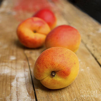 BERNARD JAUBERT - Four Apricots