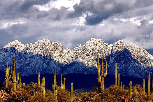 Four Peaks Mountains Arizona by Reed Rahn
