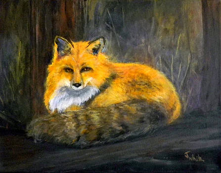 Fox in the Woods by Judie White