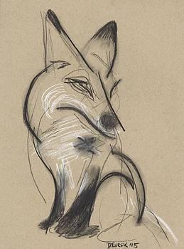 Fox Study 2 by Drew Eurek