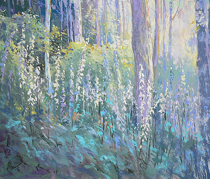 Foxgloves in the Woods by Jackie Simmonds