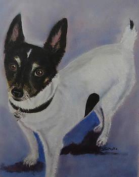 Foxy by Sharon Schultz