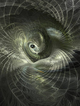 Fractal Bird in its Nest by Carol and Mike Werner