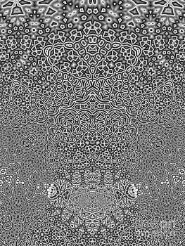 Fractal Dimension by Aymen Tabib