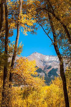 Framed By Autumn by Randy Giesbrecht