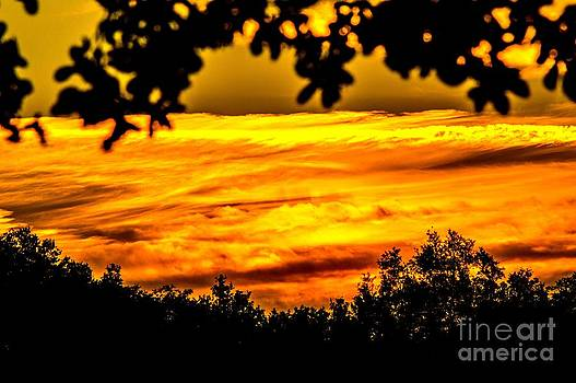 Framed Sunset Silhouettes by Imani  Morales