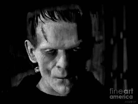 Frankenstein 2 by Stephen Shub