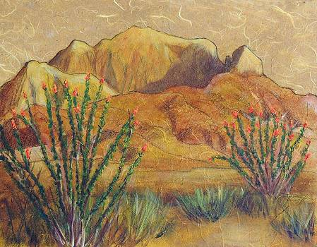 Franklins and Ocotillo by Candy Mayer