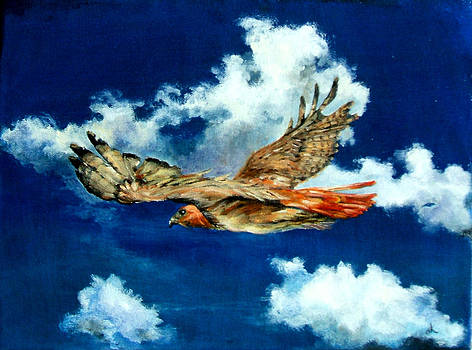 Diane Kraudelt - Freedom Of The Redtailed Hawk