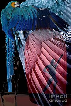 Freedom by Robert Jensen