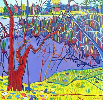 Freeman Lake Marsh by Debra Bretton Robinson