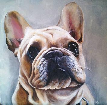 French Bulldog by Christine Maeda