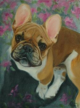 French Bulldog by Pet Whimsy  Portraits