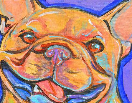 French bulldog smile by Jenn Cunningham