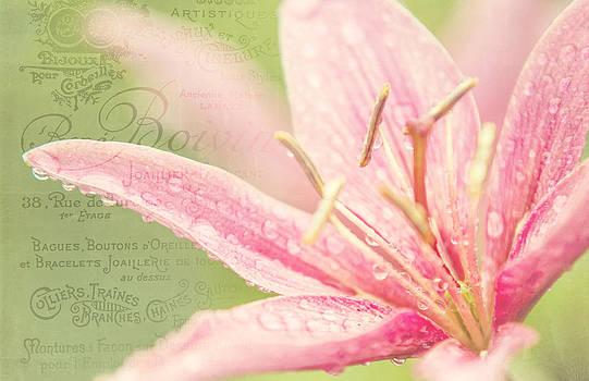 Jenny Rainbow - French Nostalgic Lilies