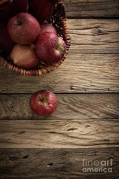Mythja  Photography - Fresh apples